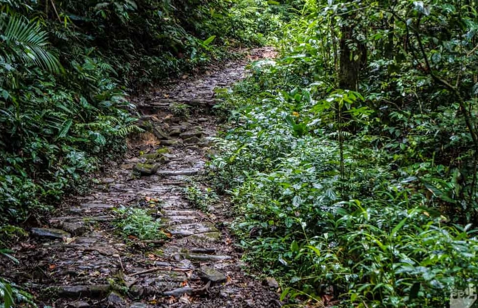 trilhas-de-sp-trilha-do-ouro