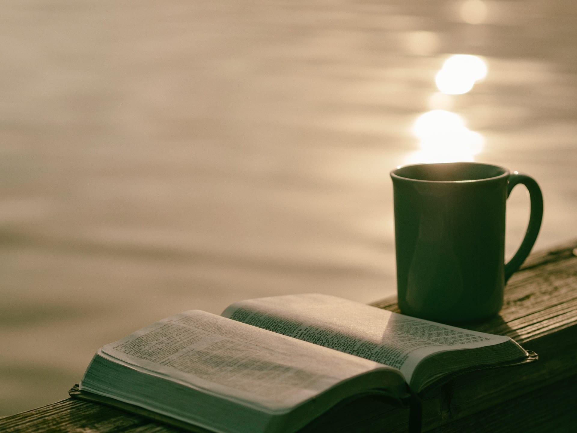 rotina-matinal-leitura